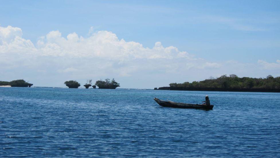 Isla Wasini
